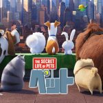 映画「ペット」はHulu・U-NEXT・Netflixのどれで見れる?