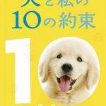 『犬と私の10の約束』はHulu・U-NEXT・Netflix・FODどれで配信してる?