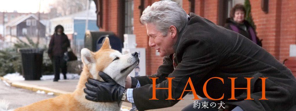 HACHI 約束の犬はどれで配信してる?