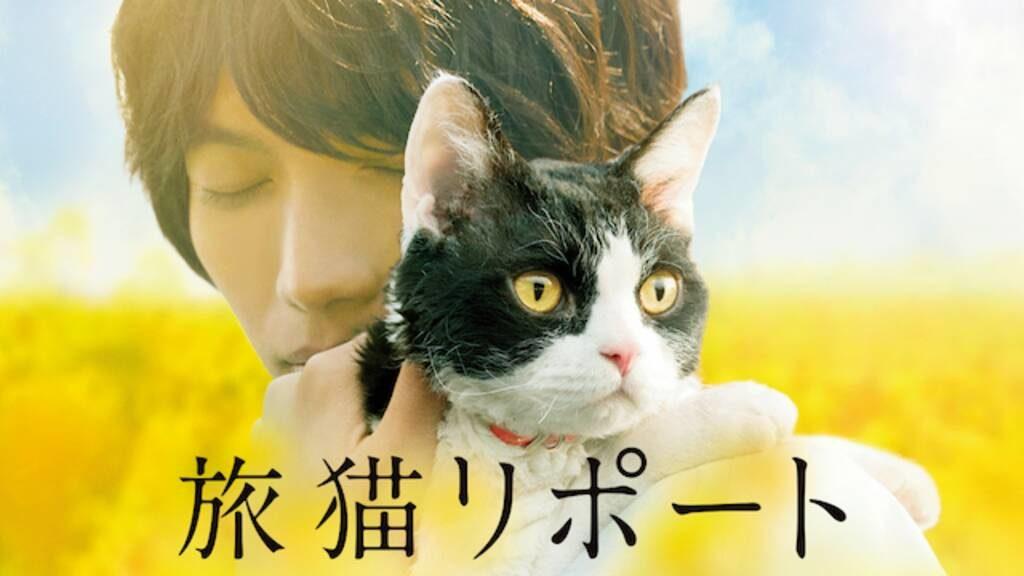 「旅猫リポート」はHulu・U-NEXT・Netflixどれで配信してる?