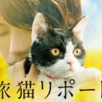 『旅猫リポート』はHulu・U-NEXT・Netflix・FODどれで配信?